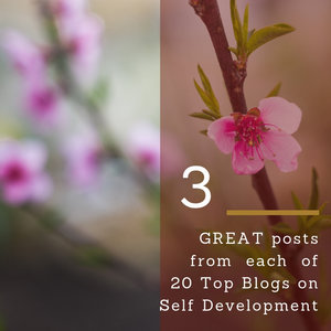 3 GREAT Posts On 20 Top Personal Development Blogs